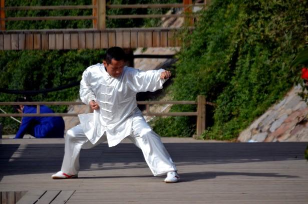 kung-fu-pose